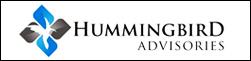Yatai hummingbird