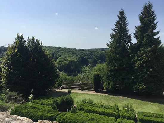 ローデンブルグ城壁の外に広がる森