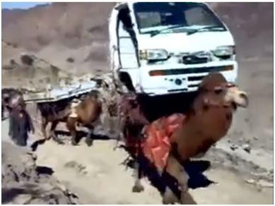 パキスタン領内へ密輸される自動車